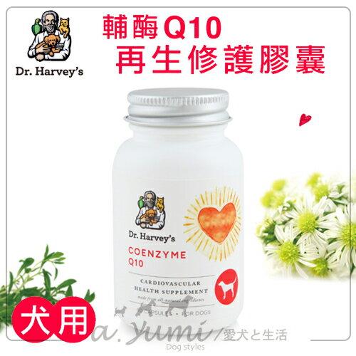《Dr.Harvey's哈維博士》犬用輔酶Q10再生修護膠囊(60顆瓶)寵物保健食品