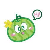 西瓜籽購物網