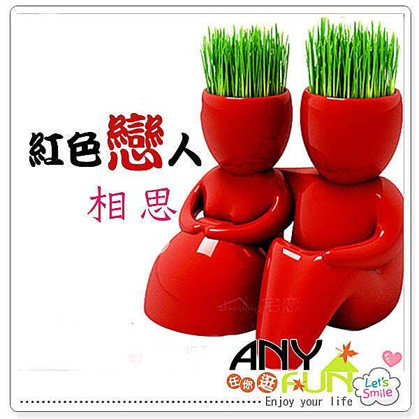 ANYFUN任你逛【T1005】新款紅色戀人 青草種植 草頭娃娃 小品盆栽 治癒系