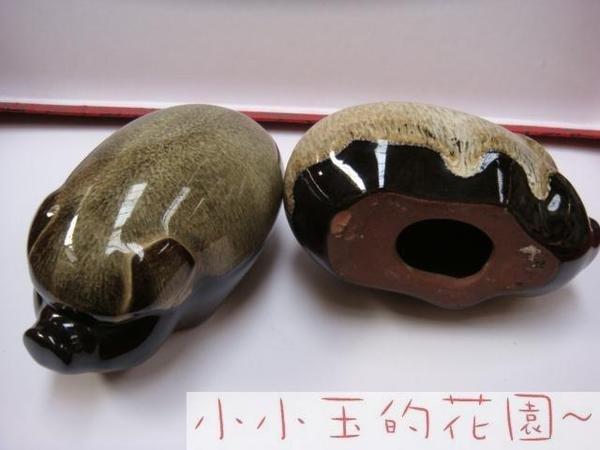 【黑瓷陶瓷小豬】趣味家居飾品時尚簡約工藝品時尚創意禮物擺件2個組(圖一)