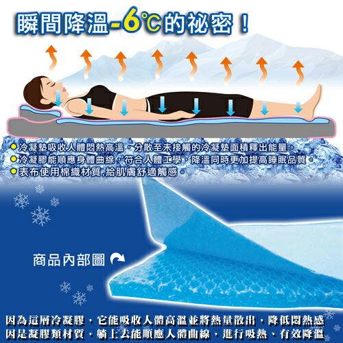 日本熱賣~IceCool降溫涼感凝膠床墊(70*140加重)!冰墊涼墊!取代涼蓆!★班尼斯國際家具名床