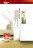 【漆太郎】虹牌458全效乳膠漆平光 1G(加侖)  /  5G(加侖) /  1L(公升) 618購物節 5