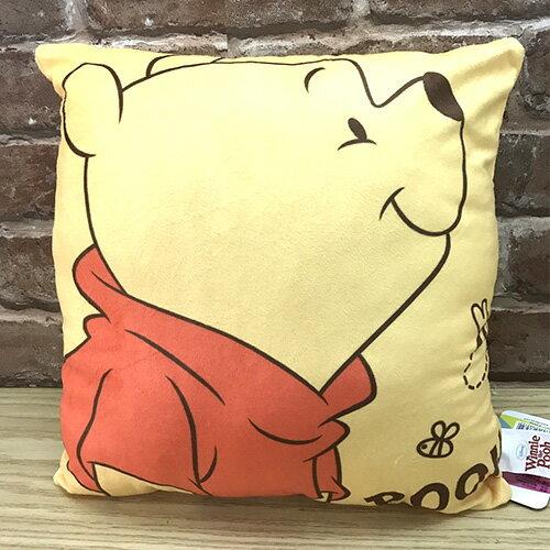 【真愛日本】17050800017 四方抱枕-維尼側臉蜜蜂 迪士尼 小熊維尼 POOH 靠枕 抱枕 方枕