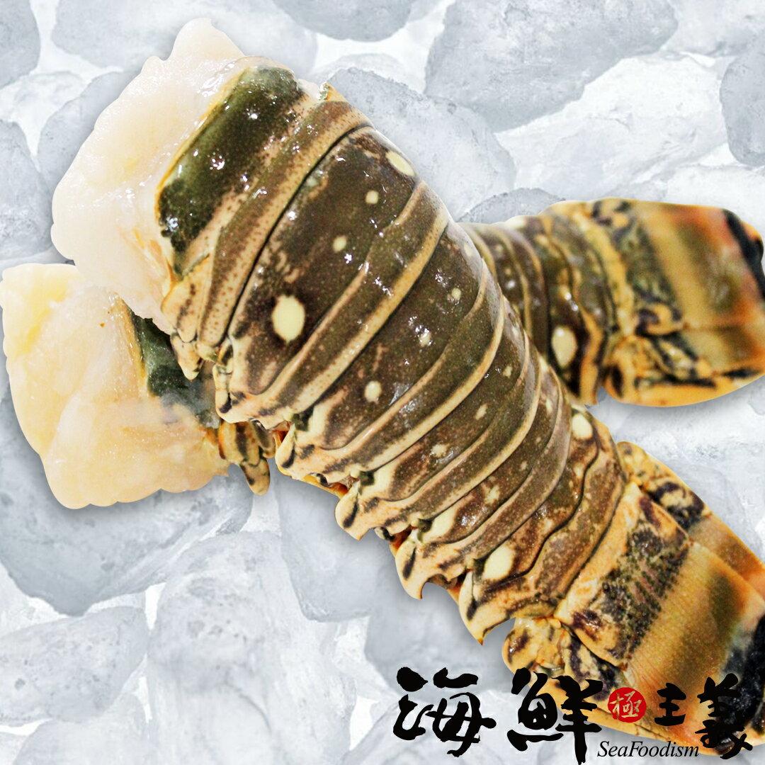 【海鮮主義】龍蝦尾 / 兩種規格 ●來自尼加拉瓜極鮮野味龍蝦尾 ●以人工捕捉方式 ●急速冷凍鎖住自然鮮甜 ●肉質Q彈鮮甜 ●值得您品味的五星級美味