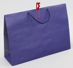 紙袋2K~20入~深寶藍~棉把手 pbag~018