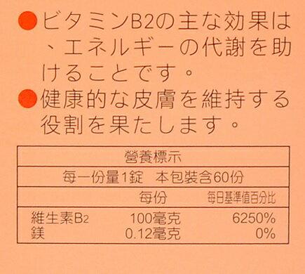 安博氏  人生 渡邊維他命B2膜衣錠 (60粒/盒)