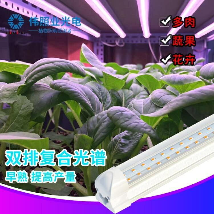 植物補光燈 偉照業led多肉補光燈上色全光譜家用室內防徒長植物生長燈仿太陽  免運