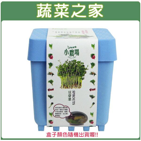 【蔬菜之家004-D17】iPlant小農場系列-豆芽菜