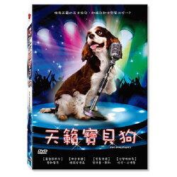 【超取299免運】天籟寶貝狗DVD