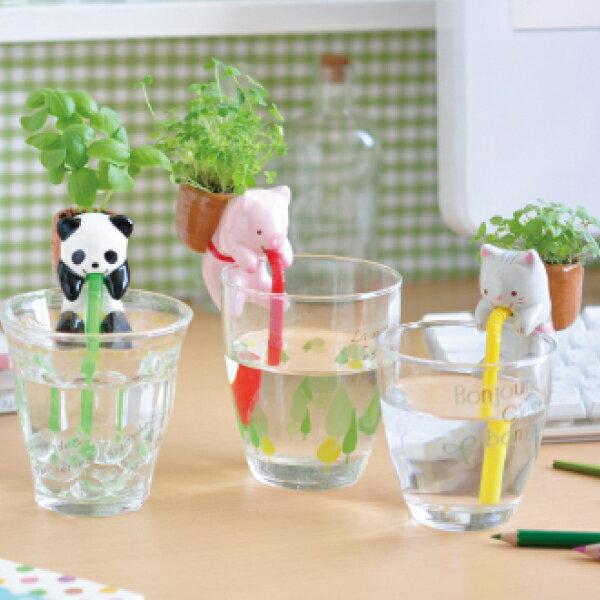 PS Mall╭*療癒熱賣!! 動物喝水盆栽 桌面迷你綠植物 嘴巴吸水盆景 小盆栽【J1447】