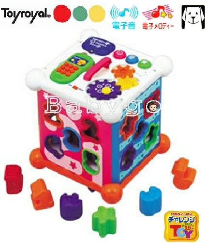 *babygo*日本樂雅Toyroyal-新六面盒