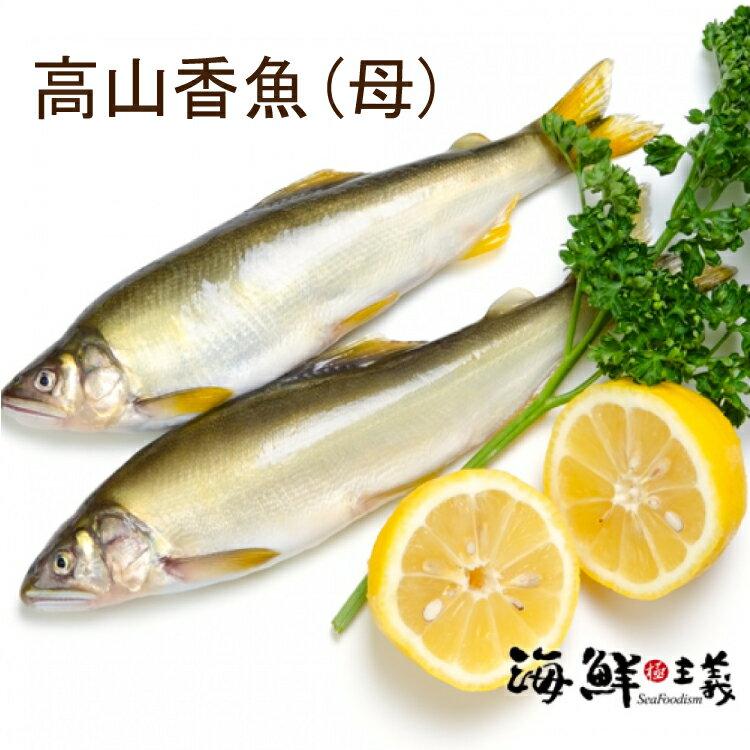 【海鮮主義】嚴選高山香魚(母)一尾約100g ★行家說母香魚油質較多,不論烤或煎,乾乾的比較香