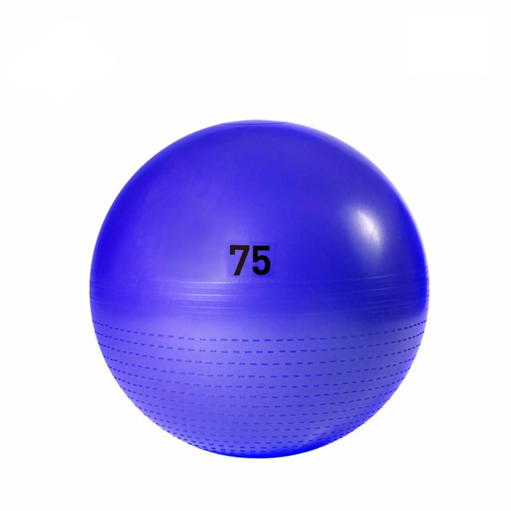 【Adidas愛迪達】伸展減壓瑜珈球(紫)-75cm (ADBL-13247PL)