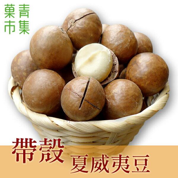 帶殼夏威夷果(夏威夷豆)(火山豆)600G大包裝附剝殼器【菓青市集】