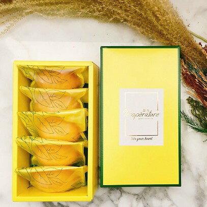 溫度・檸檬酸酸的蛋糕《5入禮盒》 伴手禮 甜點 蛋糕 磅蛋糕 老奶奶 禮盒 團購 下午茶首選 甜點 甜食