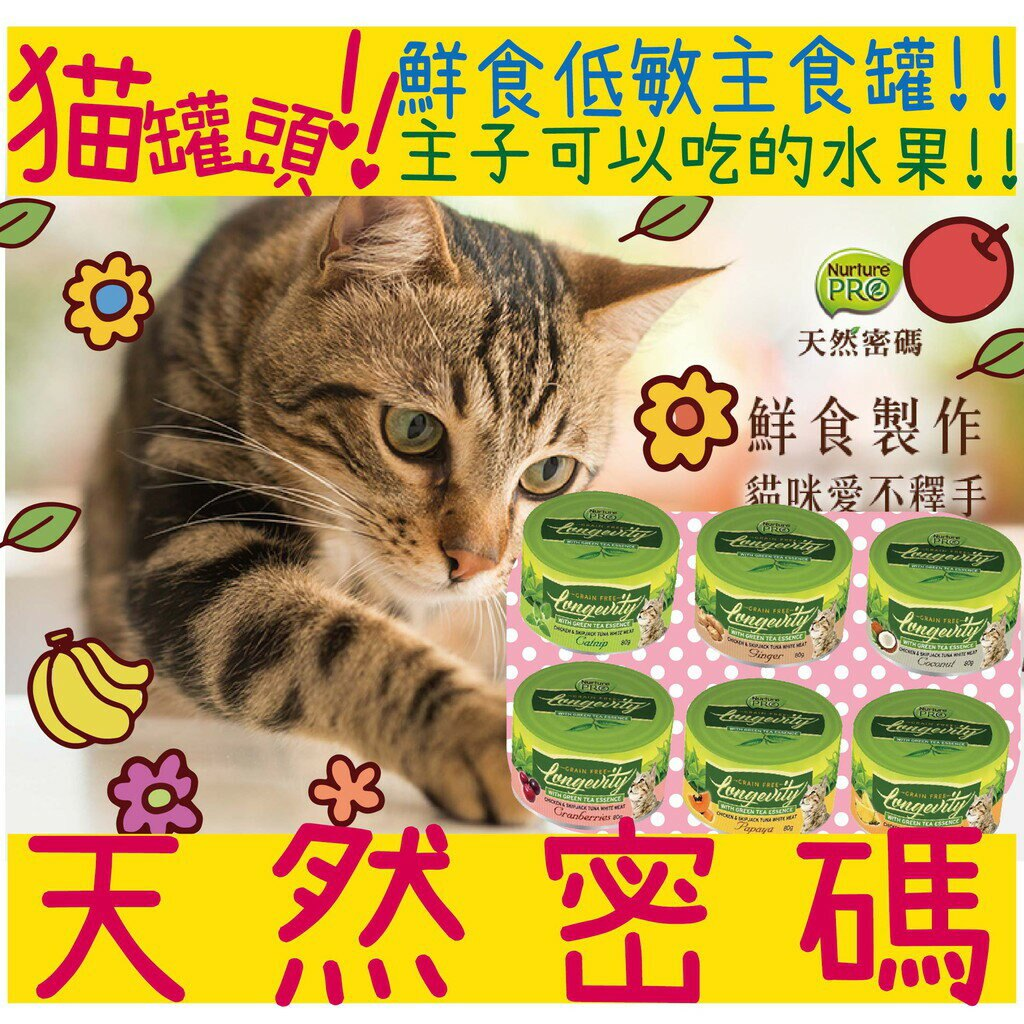 BBUY Nurture 天然密碼 永恆 貓無穀主食罐 80g 主食罐 貓罐頭 蔓越莓 貓薄荷 木瓜 鳳梨 生薑 椰子