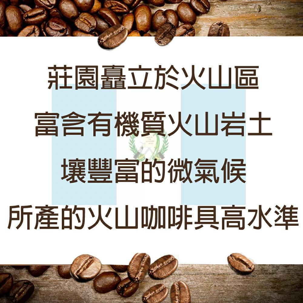 【必久咖啡】安提瓜 花神 瓜地馬拉 中度烘焙 精品咖啡豆