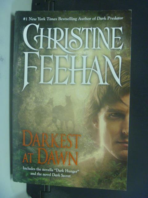 ~書寶 書T5/原文小說_GSD~Darkest at Dawn_Christine Fe