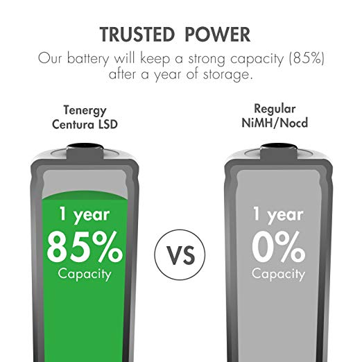 Tenergy Centura AAA NIMH Rechargeable Battery 800mAh Low Self Discharge  Triple A Battery Pre-Charged AAA Size Batteries Pack for Solar  Lights/Remote