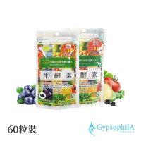 日本 生酵素 蔬果酵素濃縮膠囊