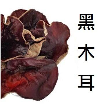 養身黑木耳 (5斤/ 包) 【擄食趣】專直營黑木耳