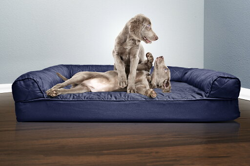 Quilted Orthopedic Sofa Pet Bed