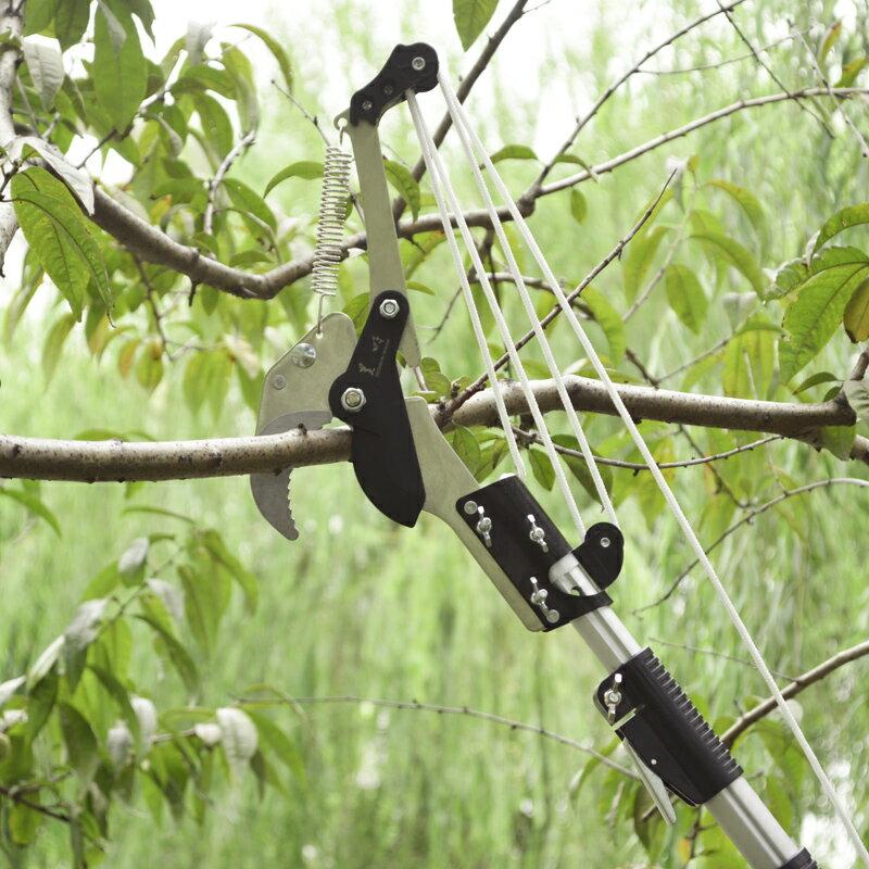 摘果器高枝剪伸縮高空剪園林果樹修枝剪樹枝剪刀園藝高空鋸修枝鋸4米『CM38945』