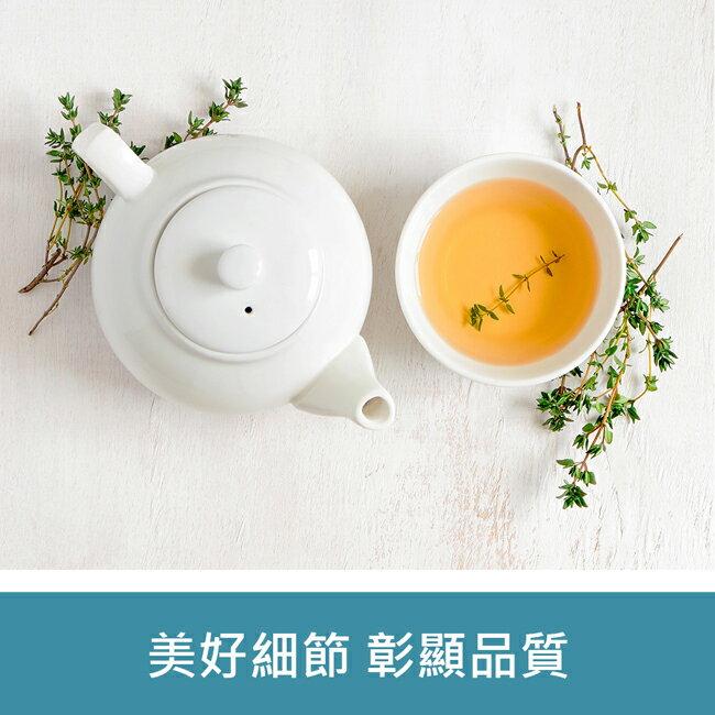 【普樂】POLAR經典電茶壺(藍)-(PL-1739)
