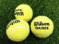 【H.Y SPORT】 WILSON/SLAZENGER 網球 散裝(3顆組)(隨機出貨)