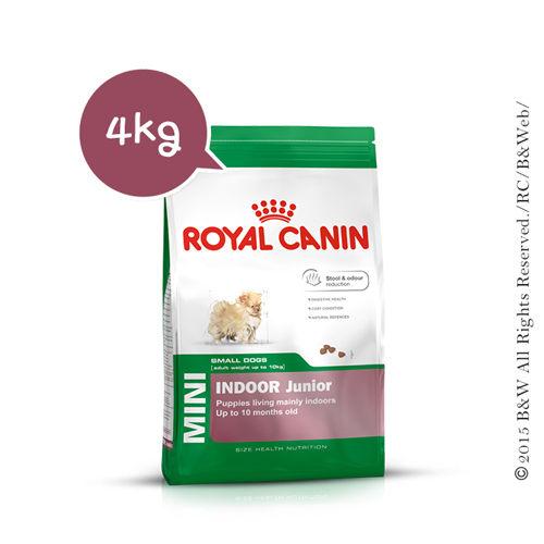 《倍特賣》法國皇家 小型室內幼犬PRIJ27 4KG