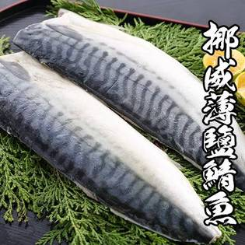 【淘氣寶寶】挪威鯖魚-箱購21片~來自北大西洋冰冷海域,新鮮上市