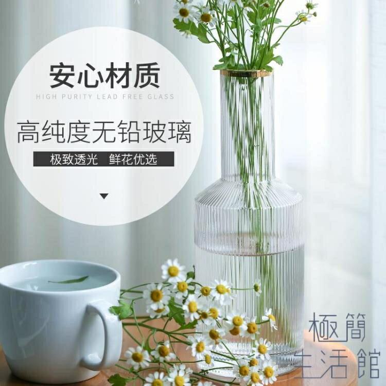 樂天精選▲花瓶擺件客廳插花小口細玻璃透明北歐輕奢家居