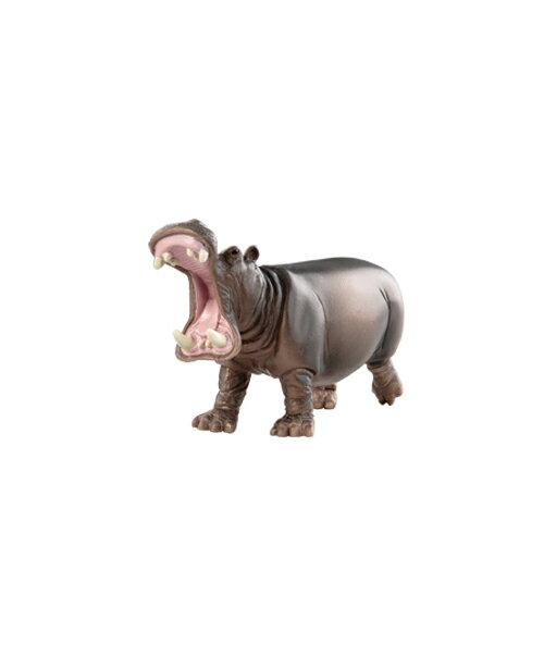 【淘氣寶寶】 美國 B.Toys 感統玩具 Terra 草原動物-河馬
