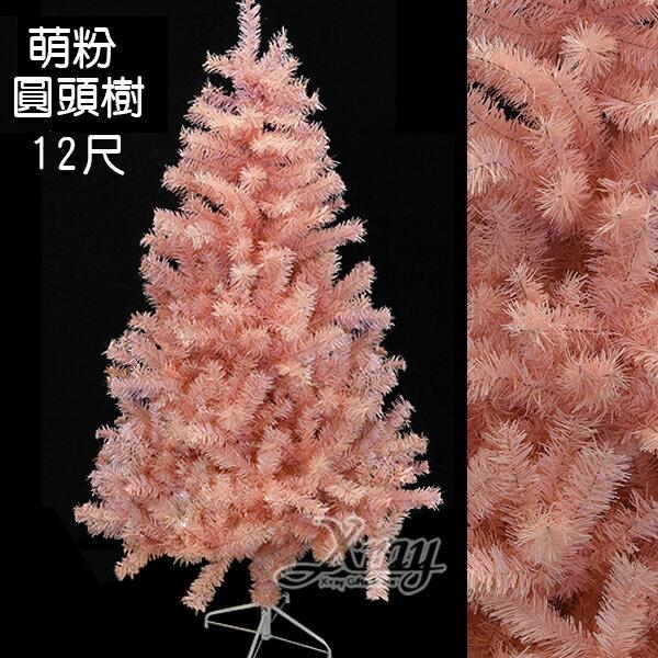 <br/><br/>  X射線【X050031】12尺加密圓頭樹,聖誕樹/聖誕佈置/聖誕節/會場佈置/聖誕材料/聖誕燈<br/><br/>