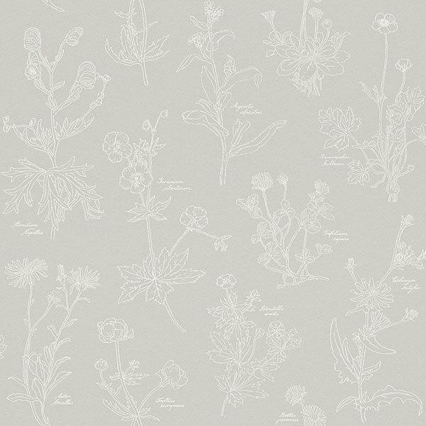 rasch2018Nordics897418北歐風壁紙灰色手繪植物花草插畫DIY工具套餐牆紙