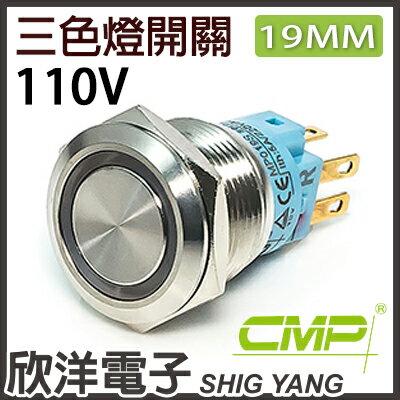 ※欣洋電子※19mm不鏽鋼金屬平面三色環形燈無段開關AC110VS1901A-110RGB紅綠藍三色光CMP西普