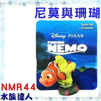 【水族達人】美國Disney迪士尼海底總動員《尼莫與珊瑚 NMR44》PENN-PLAX 龐貝 裝飾品 公仔 授權販售