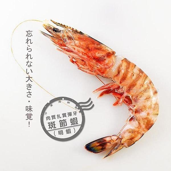 極禾楓肉舖&斑節蝦(明蝦)