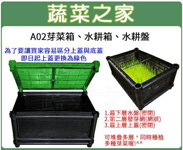 【蔬菜之家005-A30】A02芽菜箱、水耕箱、家庭式多用途芽菜培育箱