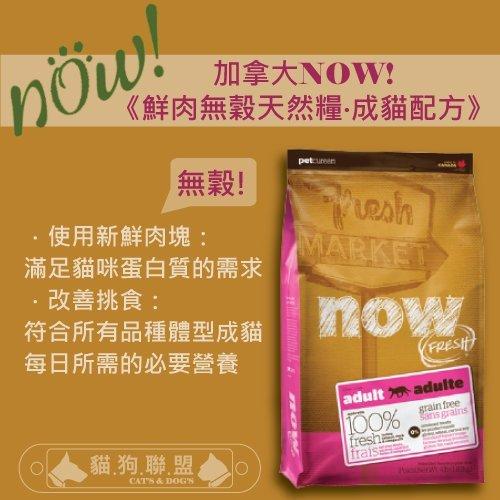 +貓狗樂園+ 加拿大NOW【鮮肉無穀天然糧。成貓配方。16磅】$3150 - 限時優惠好康折扣