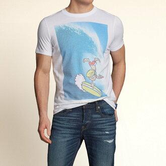 美國百分百【全新真品】Hollister Co. T恤 HCO 短袖 T-shirt 上衣 白 海鷗 阿丹 衝浪 印刷 棉質 男 M號