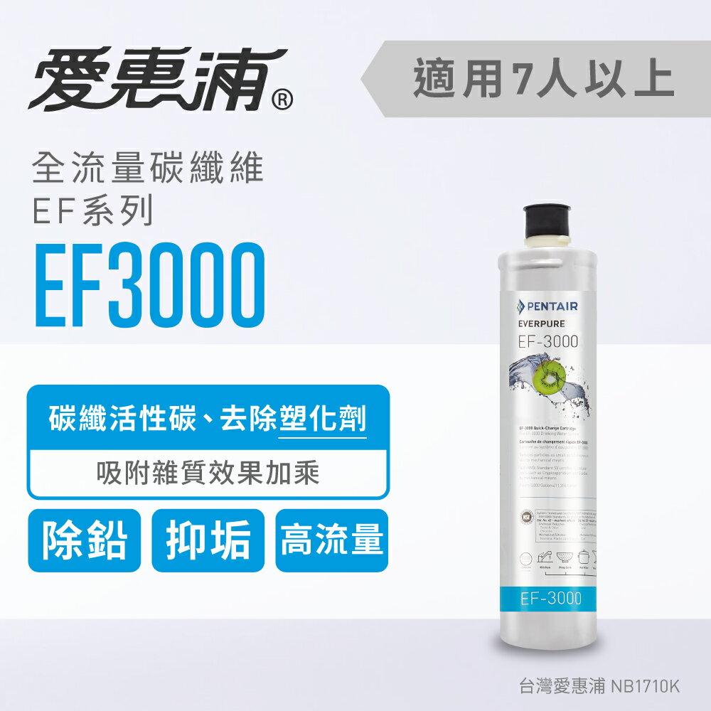 【台灣愛惠浦】EF3000 濾心 - 限時優惠好康折扣