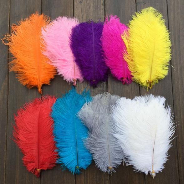 12色 羽毛 鴕鳥羽毛(20-25cm)DIY配件 孔明扇硬羽毛 天然羽毛 軟羽毛 彩色羽毛 逗貓棒【塔克】