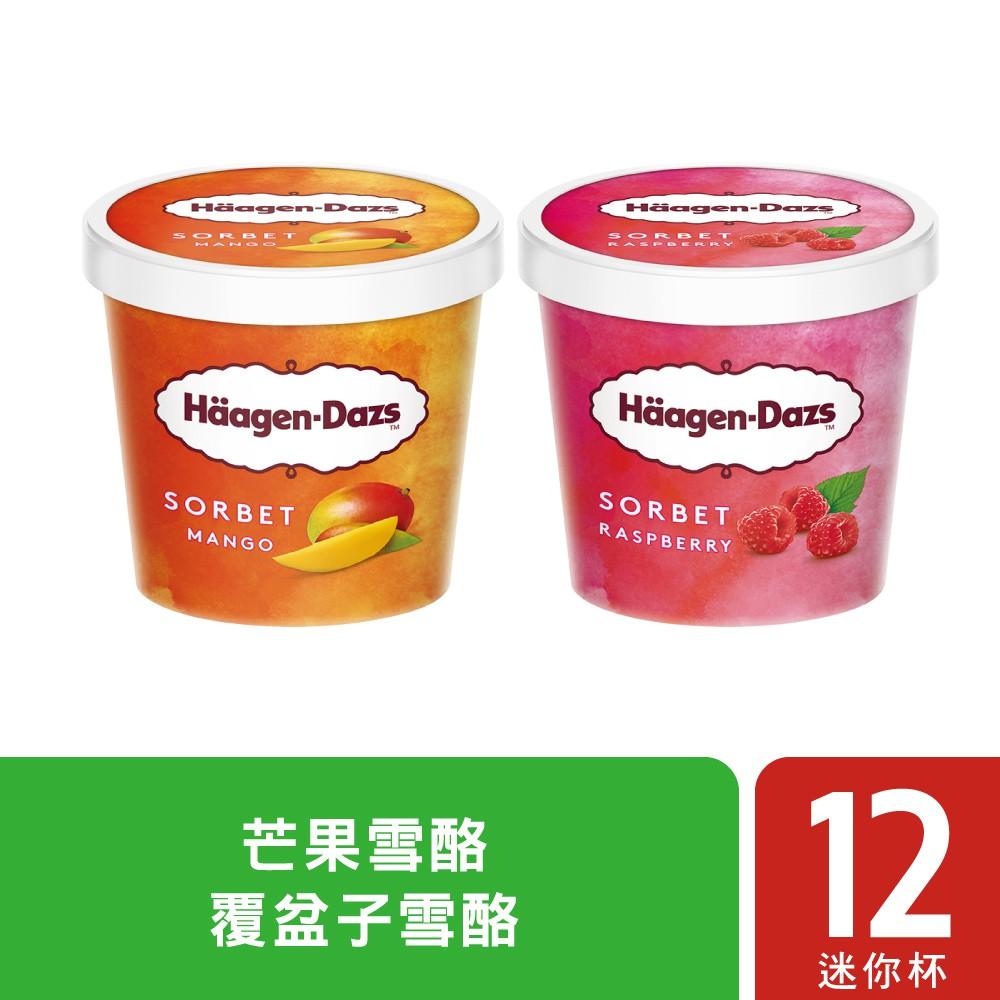 哈根達斯 仲夏水果迷你杯12入組  - 日本必買 日本樂天熱銷Top 日本樂天熱銷