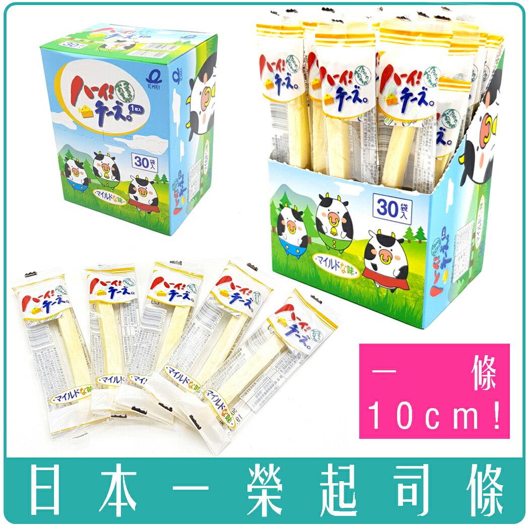 《Chara 微百貨》 全新到港 日本 一榮 鱈魚 起司條 10cm 30入/盒 240g 露營 寶寶 小孩 起司