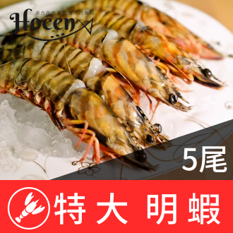 『家適海鮮』明蝦★深海龍王★海大蝦★每隻都超過15公分★5隻430克重★全館499免運★適合:鐵板、海鮮燉飯、烤肉