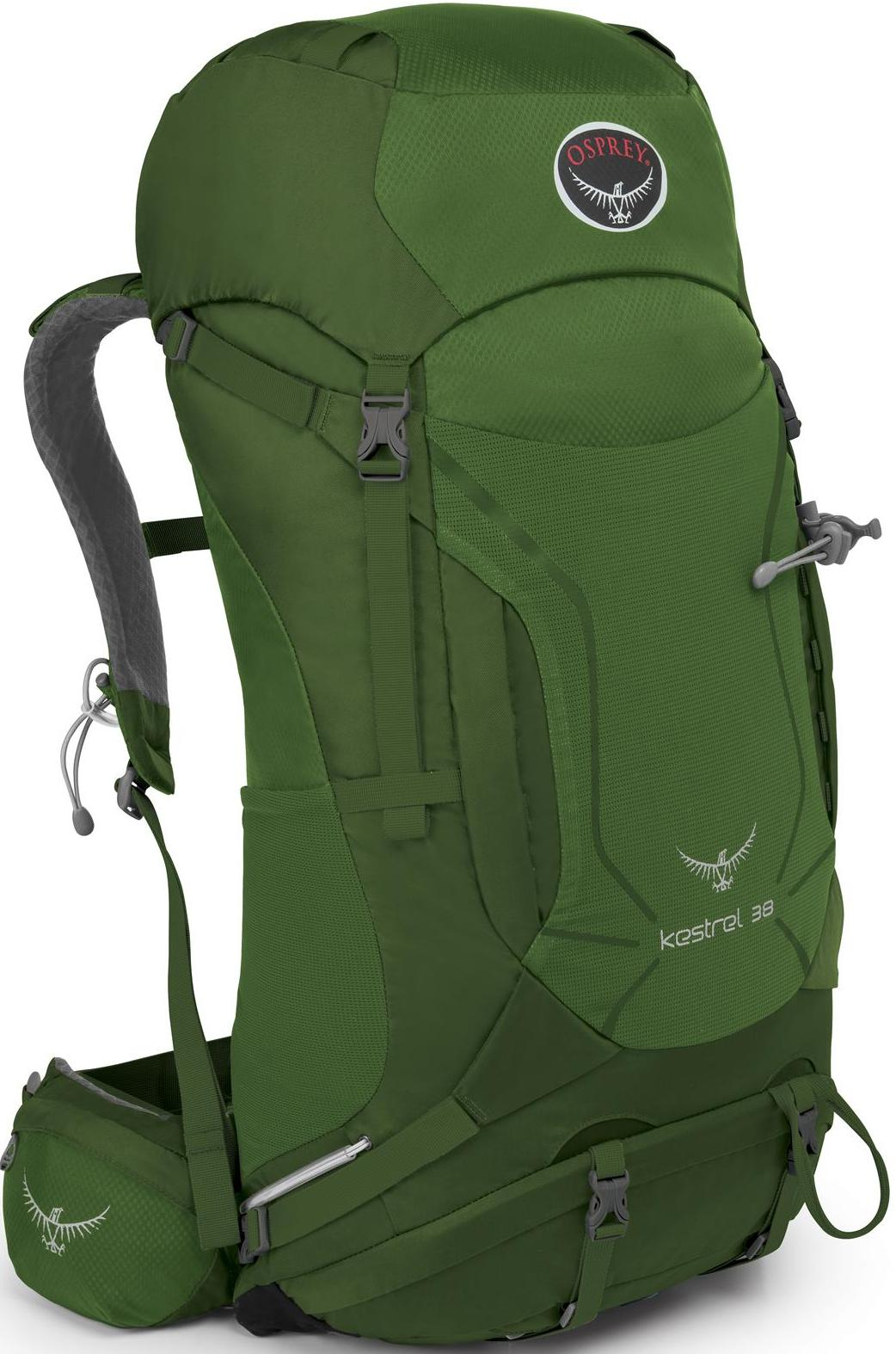 Osprey Kestrel 38 小鷹輕量登山背包/健行背包 附贈背包套 新款 38升 叢林綠/台北山水
