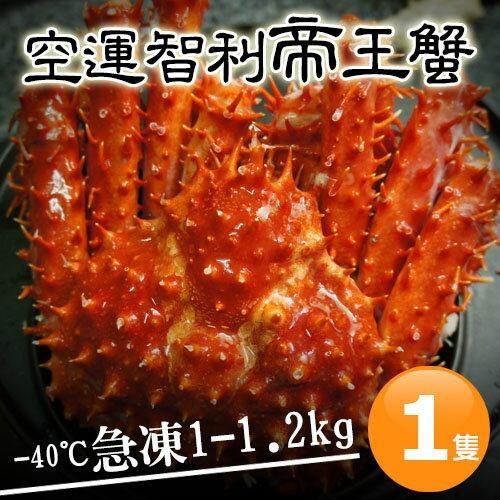 【築地一番鮮】比臉大急凍智利帝王蟹1隻(1-1.2kg/隻)