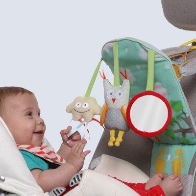 【本月滿千折百,售價已折】以色列【TAFToys】車內座椅玩具系列-手腳運動