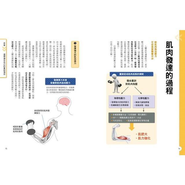 健身新手重訓攻略:槓片啞鈴×阻力帶×健身器材,新手必學的五大重訓,教你正確施力、精準增肌 3
